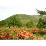 『湯ノ丸山、烏帽子岳 お花を楽しむトレッキング(7/3)開催』の画像