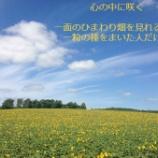 『大阪開講:コミュニケーション心理学19:ゲシュタルト療法�』の画像