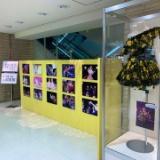 指原莉乃卒業コンサートDVD発売、パネル展示や衣装展のある店舗も…