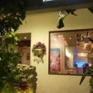 沖縄料理てぃーあんだー堀江店 上質空間でクレソン鍋