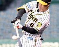 【悲報】佐藤輝明さん、31試合で9本もホームランを打ってしまうwwww