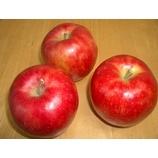 『発売決定ー! 木村さんのりんごを100%造った『にごり林檎酢』』の画像