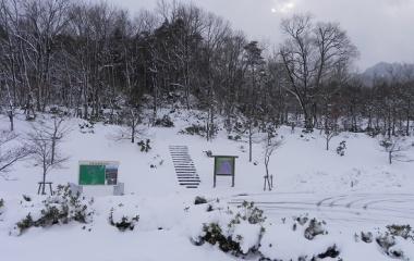 『玉峰山(820m) Dec.25,2012』の画像