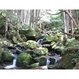 『晴れ渡った気持ち良い稜線歩きが楽しめました(八ヶ岳)』の画像
