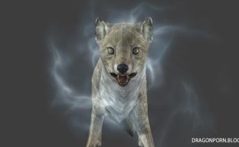 Frostbite - A Magical Fox Follower