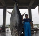 「涙出た」 重さ370キロ 巨大マグロ水揚げされる 沖縄