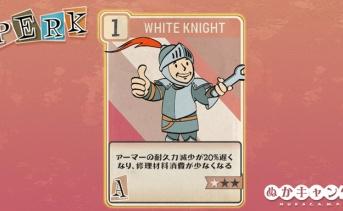 Fallout 76:White Knight(Agility)