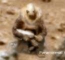 【火星ヤバイ】火星で武器を持った古代火星人兵士みたいなのが発見される
