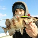 『2月 3日 更新 2日釣果 スーパーライトジギング SLJ 』の画像