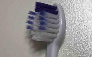 コストコで発見 新感覚の歯ブラシ