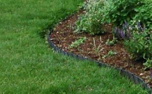 気になっていた芝生のエッジ切り