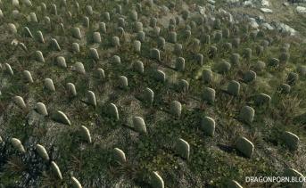 Realistic Falkreath Graveyard