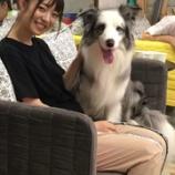 『いい話すぎる・・・乃木中で阪口珠美と共演したauraさん、溢れ出す新たなエピソードを語る・・・』の画像