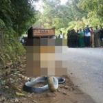 凄い・・・インドで3つ頭の蛇が発見される