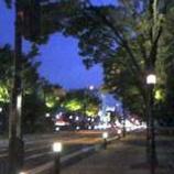『美しい街並み』の画像
