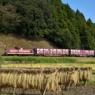 収穫の季節 Iwaki