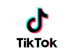 【速報】 日本政府、TikTokの調査と規制開始キタ━━━━(゚∀゚)━━━━!! 承認欲求の塊ども終了へwwwwww