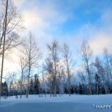 『オンシーズンのルスツリゾートでスキー!』の画像