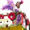 2016年横浜開港記念みなと祭国際仮装行列第64回ザよこはまパレード その102(イセザキ・モール1-7st.)
