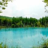 『富良野美瑛2017:青い池&拓真館』の画像