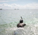 51歳フランス人スイマー、太平洋横断に挑戦へ 銚子を出発