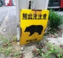 【注意喚起】神奈川県内でクマ出没急増 厚木市内8件、相模原市内5件等。家畜が襲撃される事件も