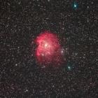 『モンキー星雲(NGC2174)』の画像