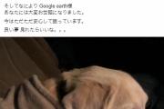 【京都】おばさんによる虐待動画が拡散され話題のわんちゃん、無事保護される