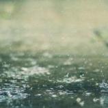 『男と山椒魚の話「懺悔の雨」』の画像