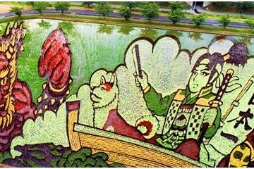 海外「これこそ日本の芸術」圧倒的に細かやかな田んぼアートに日本人らしさを感じる海外