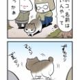 キャンプ場のねこ〜君の名(ニャ)は〜