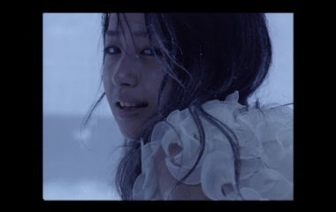 『雪の華』の画像