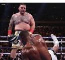 【悲報】ボクシングヘビー級の無敗チャンピオン、糞デブにボコボコにされてしまう
