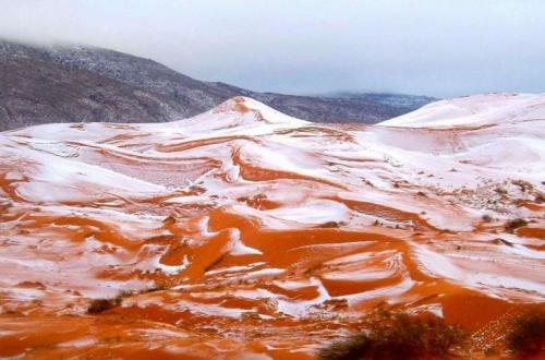 【画像あり】サハラ砂漠で雪降った結果wwwwwwwwwwwwwwwのサムネイル画像