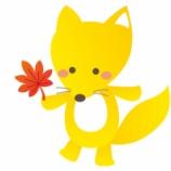 『キツネはエキノコックスがなかったら犬猫並みの人気ペットになってたよね』の画像