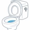 洋式トイレでおしっこをするとき、中蓋を上げっぱなしにすると嫁が怒る。「5歳の娘が落っこちるでしょ!」と言うのだが…