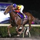 『【高知・だるま夕日賞】スペルマロンが断然人気に応えて7馬身差V』の画像