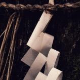 『呪いの儀式』の画像
