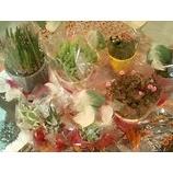『じつはお花が好き…』の画像