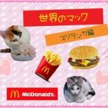 『【世界のマック】を食べてみよう!【スリランカ編】』の画像