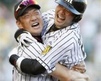 阪神・岡崎太一(37)2004自由獲得枠 今シーズンプロ16年目←すごい