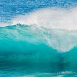『【水俣病犠牲者】小泉進次郎環境相「水俣のきれいな海で取れた魚は、本当にうまいですね」』の画像