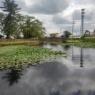 9月の長峰公園(栃木県矢板市)の池で見られた水面の映り込み!!