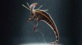 【恐竜】学名「槍の神」、肩から針のような突起が生えた新種恐竜が発見される