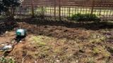 ワイドカタ、庭に畑作ったったwww(※画像あり)