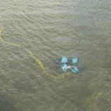 『水中ドローン』の画像
