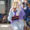 2016年 第43回藤沢市民まつり その25(湘南なぎさ連)