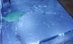 【画像】水槽の油膜でここまで酷いのは初めて見た・・・原因はなんだろう