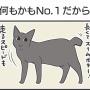 PECO更新のお知らせ/悪さをしない黒猫写真