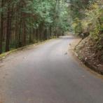 【!?】男性さん、グーグルマップを見ていたら謎の山間道路を発見→気になりすぎたので現地に行ってみた結果・・・
